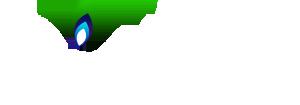 seff_logo